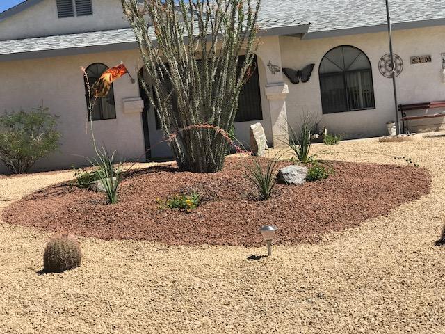 Desert Landscaping Arizona